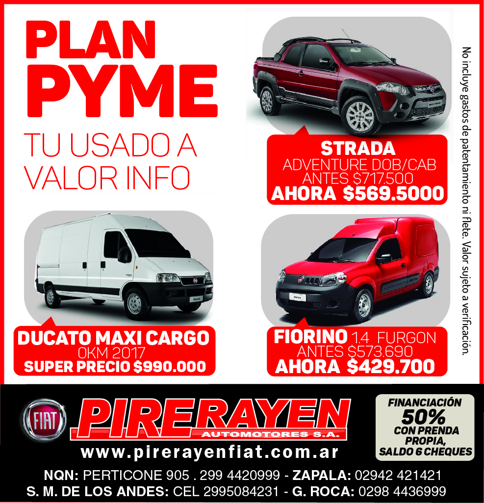 PIRE RAYEN plan pyme 2019